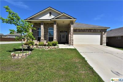 Killeen Single Family Home For Sale: 3501 Parkmill Drive