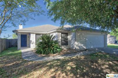 New Braunfels Single Family Home For Sale: 2618 Dove Crossing Drive