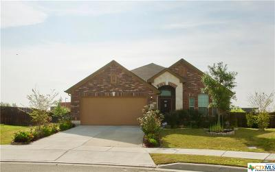 Cibolo Single Family Home For Sale: 305 Atalaya