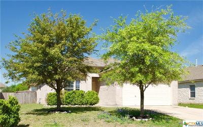 Kyle TX Single Family Home For Sale: $215,000
