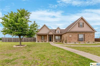 Williamson County Single Family Home For Sale: 101 Blanco Drive
