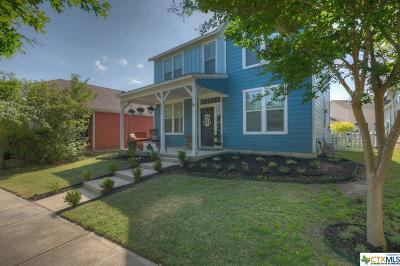 Kyle TX Single Family Home For Sale: $242,000