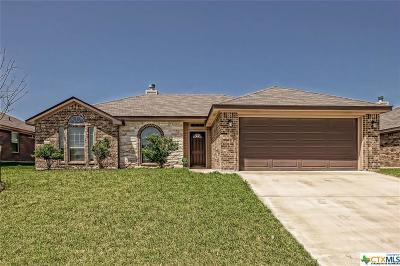 Killeen Single Family Home For Sale: 6203 Newcastle Drive