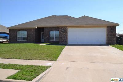Killeen Single Family Home For Sale: 9700 Diana Drive