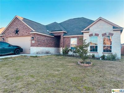 New Braunfels Single Family Home For Sale: 337 Callalily