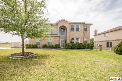 Harker Heights Single Family Home For Sale: 101 Village Drive