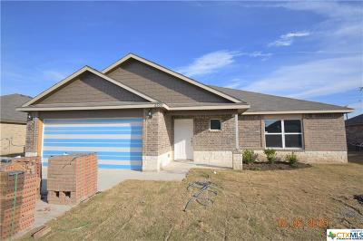 Killeen Single Family Home For Sale: 6502 Catherine Drive