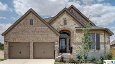 San Antonio Single Family Home For Sale: 28453 Shailene Drive