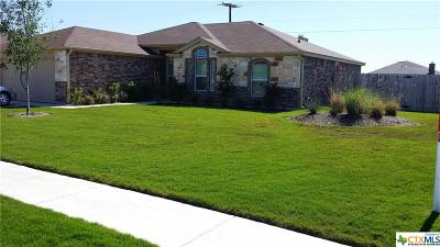 Killeen Single Family Home For Sale: 6209 Brushy Creek Drive