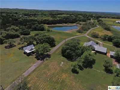 Canyon Lake Single Family Home For Sale: 2040 Rebecca Creek Road