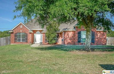 Belton Single Family Home For Sale: 417 Bellwood Drive