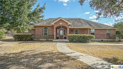 Single Family Home For Sale: 255 Texas Country Drive