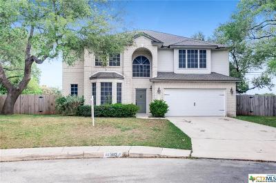 San Antonio Single Family Home For Sale: 11503 Windwalk