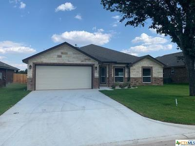 Belton Single Family Home For Sale: 517 Damascus Drive