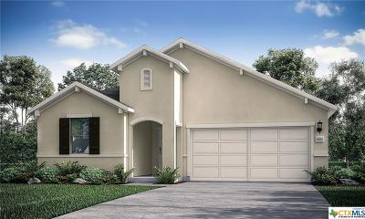 New Braunfels Single Family Home For Sale: 3940 Legend Rock