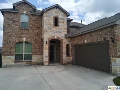 New Braunfels Single Family Home For Sale: 313 Green Heron
