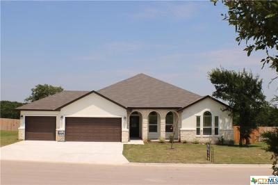 Belton TX Single Family Home For Sale: $308,750
