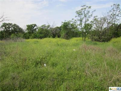 Belton Residential Lots & Land For Sale: 3686 & 3692 Lake Ridge Dr.