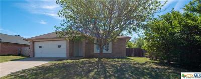 Killeen Single Family Home For Sale: 3206 Southhill Drive
