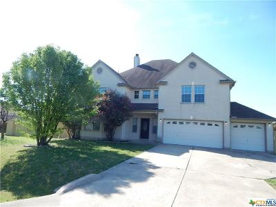 Round Rock Single Family Home For Sale: 113 Silver Lace Lane