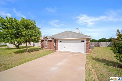 Killeen Single Family Home For Sale: 2208 Waterfall Drive