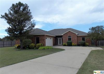 Belton Single Family Home For Sale: 3701 Pine Terrace Court