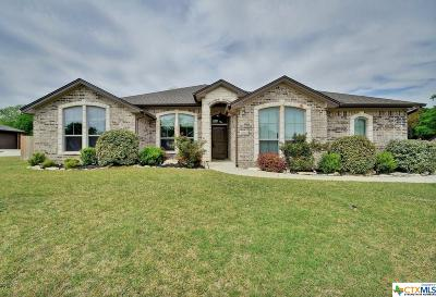 Belton Single Family Home For Sale: 850 Ridgeoak Drive