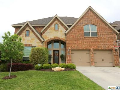 New Braunfels Single Family Home For Sale: 586 Oak Cascade