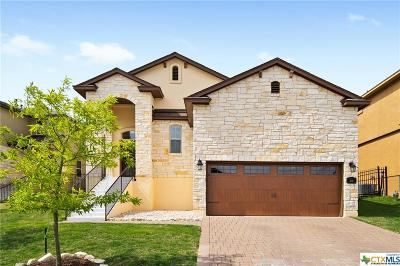 San Marcos Single Family Home For Sale: 315 Parkside Drive