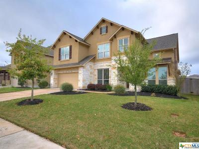 Georgetown TX Single Family Home For Sale: $409,900