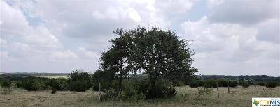 Lampasas Residential Lots & Land For Sale: Tbd Cr 103