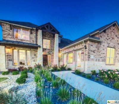 New Braunfels Single Family Home For Sale: 1719 Village Springs