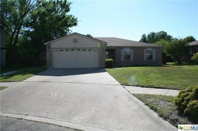 Killeen Single Family Home For Sale: 4505 Paintbrush Drive