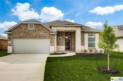 New Braunfels Single Family Home For Sale: 634 Mission Hill Run