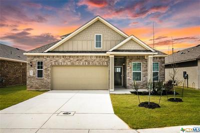 New Braunfels Single Family Home For Sale: 655 Wipper