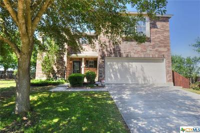 Comal County Single Family Home For Sale: 3058 Snowberry