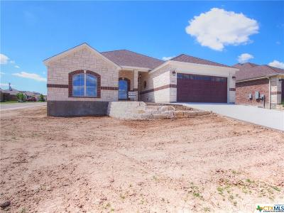 Jarrell Single Family Home For Sale: 420 Western Sky Trail