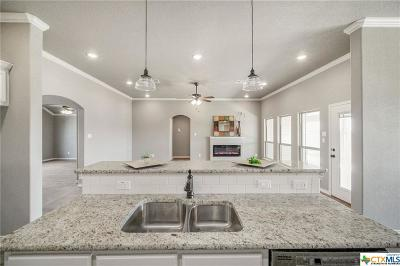 Salado Single Family Home For Sale: 4005 Joe Bozon Dr Drive