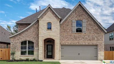 San Antonio Single Family Home For Sale: 112 Ricadonna