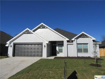 Temple TX Single Family Home For Sale: $247,900