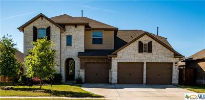 Williamson County Single Family Home For Sale: 253 Norcia Loop