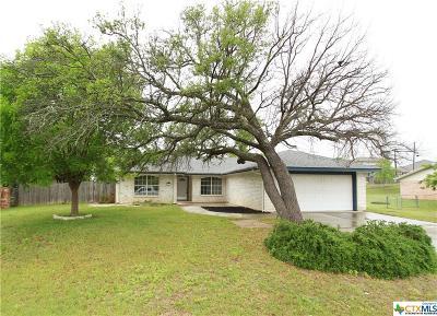 Lampasas Single Family Home For Sale: 38 Castleberry
