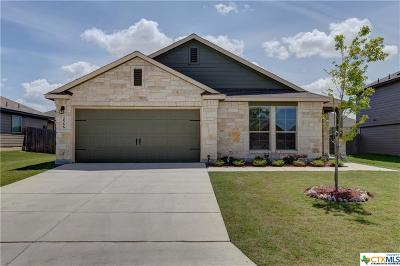 New Braunfels Single Family Home For Sale: 2566 Lonesome Creek Trail
