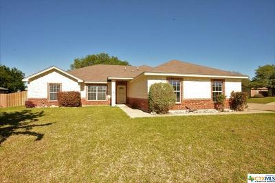 Bell County Single Family Home For Sale: 327 Nolan Ridge Drive