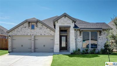 New Braunfels Single Family Home For Sale: 3070 Abens