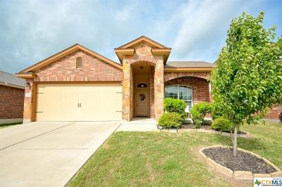 Killeen Single Family Home For Sale: 9617 Shimla Drive