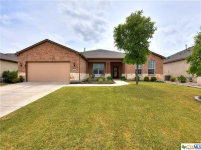 Williamson County Single Family Home For Sale: 902 Major Peak Lane
