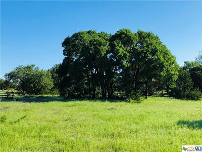 Kempner Residential Lots & Land For Sale: Tract 4 E Fm 580