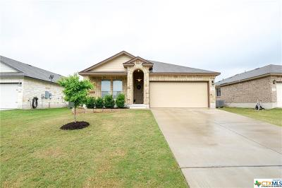 Bell County Single Family Home For Sale: 1308 Emerald Gate Drive