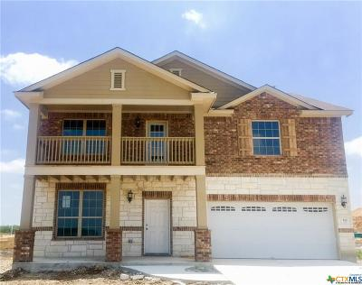 San Marcos Single Family Home For Sale: 112 Gray Wolf Drive